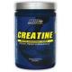 CREATINE MONOHYDRATE - 300 g